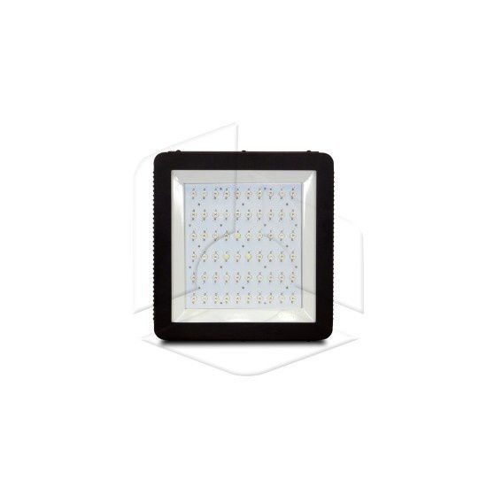 LED Grow Lights: Different Details about It