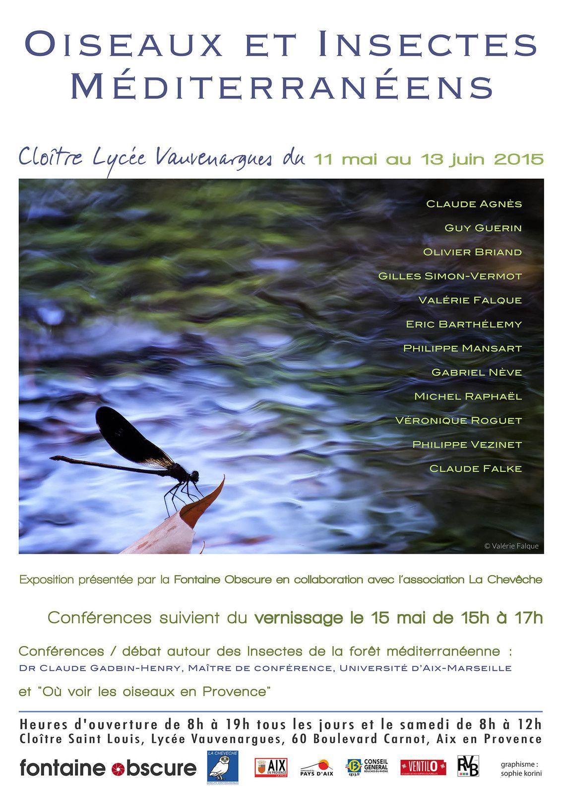Exposition Oiseaux et insectes méditerranéens