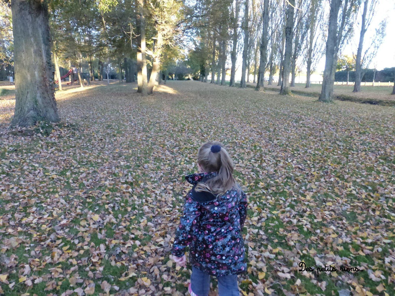 Les baudets du Poitou