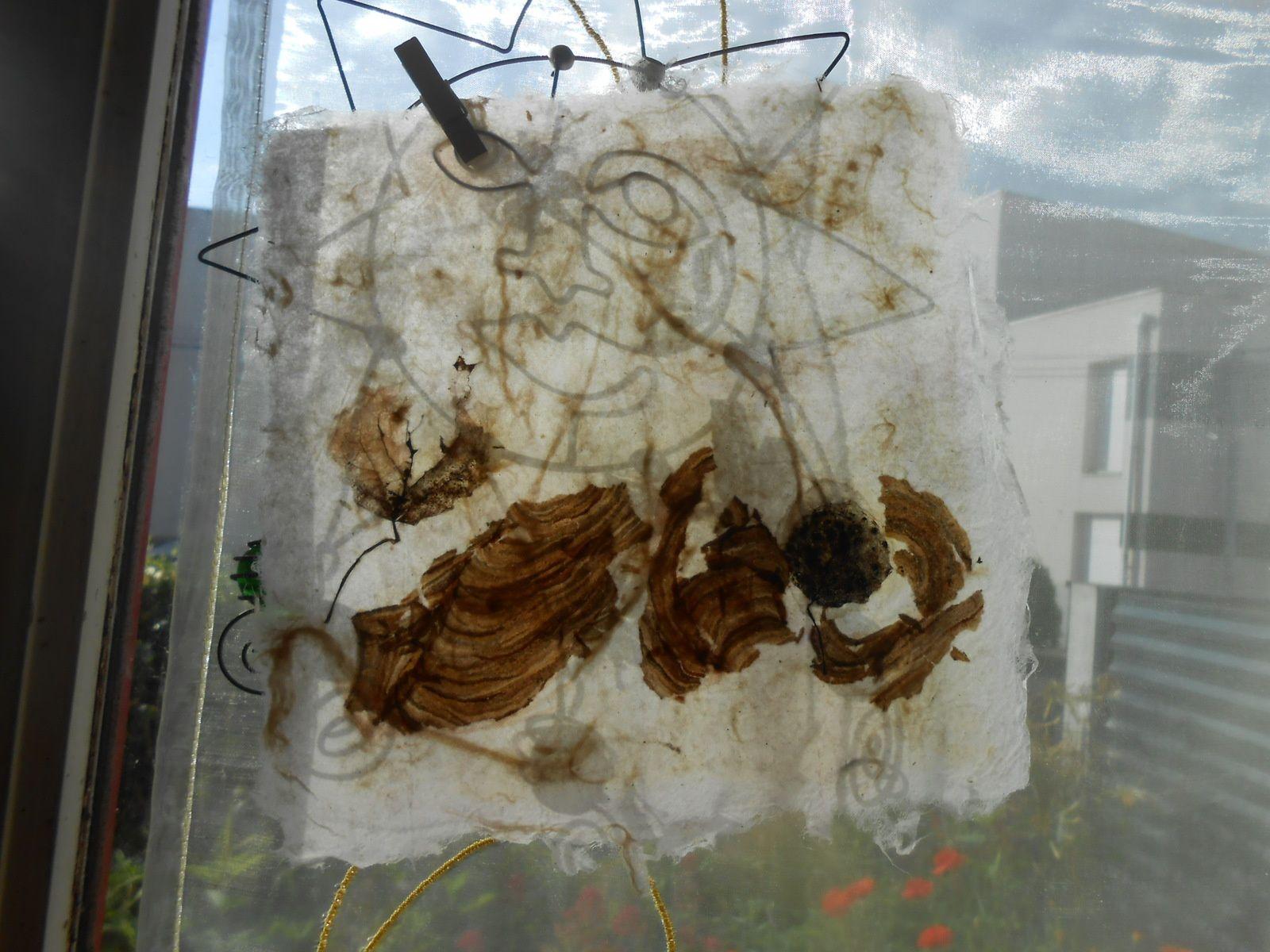 papier japon réalisé à l'atelier de Viviane Fontaine