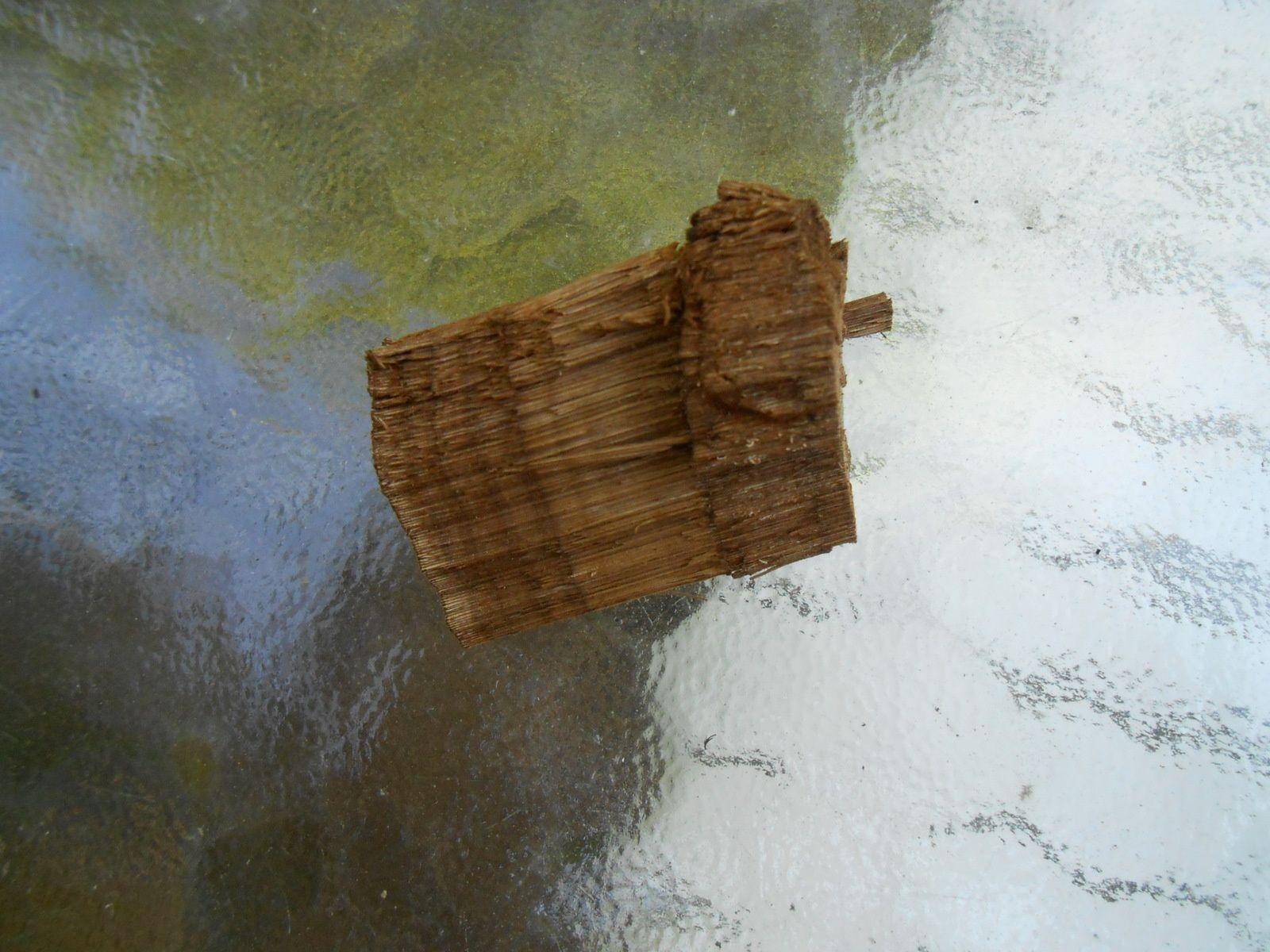la coupe de l'amadouvier est tonique , on voit bien les deux textures internes du champignon , la partie feutrée , l'amadou et la partie boisée