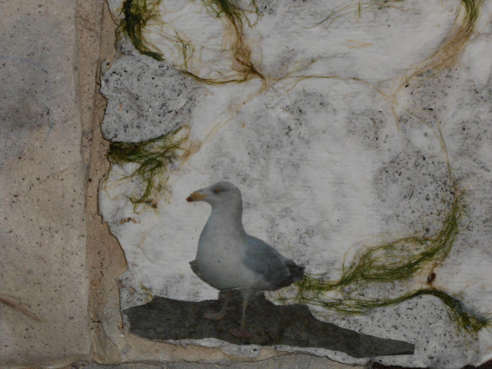 papier de chanvre, d'algues, de sable