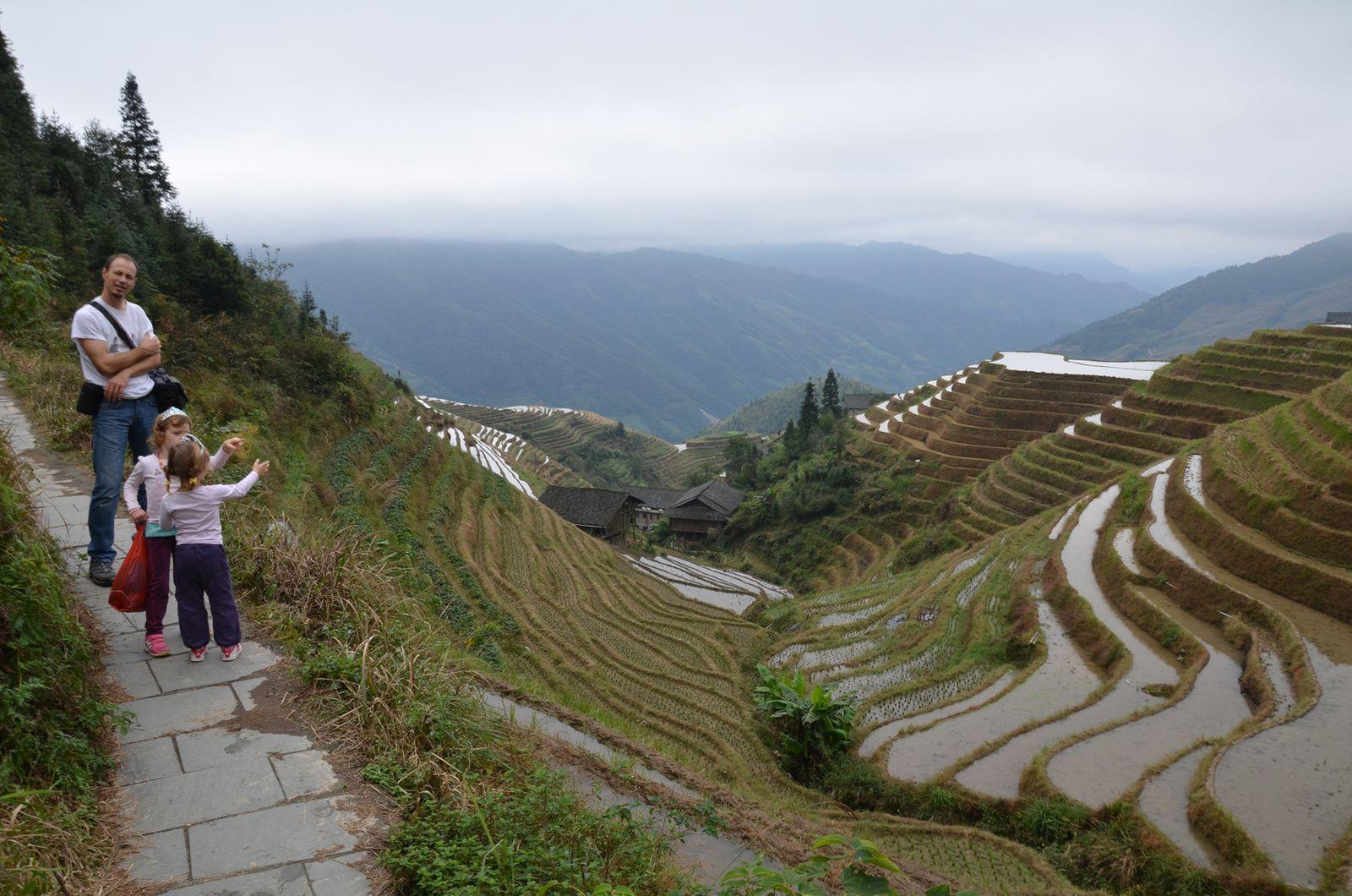 Ping'An, les rizières