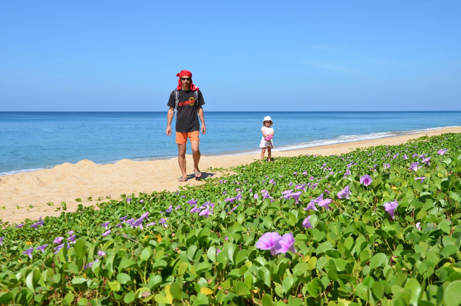 Balade au nord de Phuket (1)