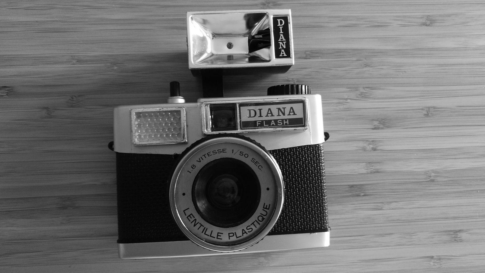un Diana Flash quasi complet (il manque la dragonne) pour 2 euros &#x3B; ce n'est rien mais ça me fait plaisir. Je préfère payer ça 2 euros que 30 euros, logique non ?