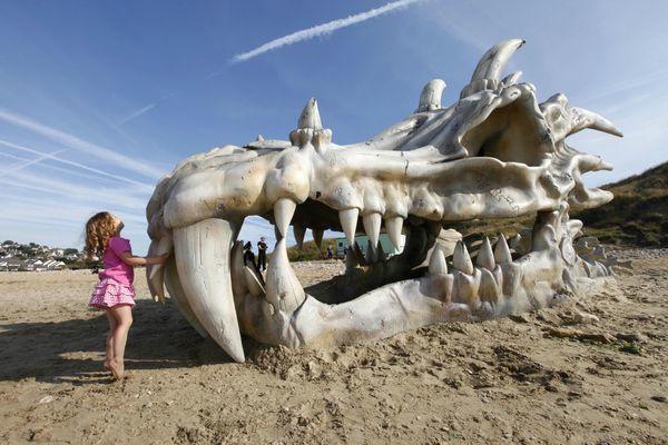 Un crâne de dragon géant sur une plage Anglaise !