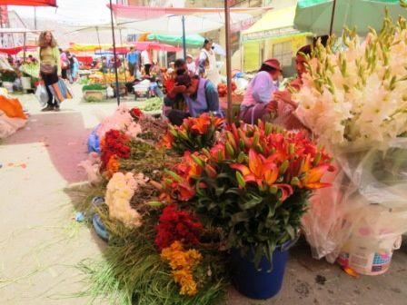 Le marché des couleurs