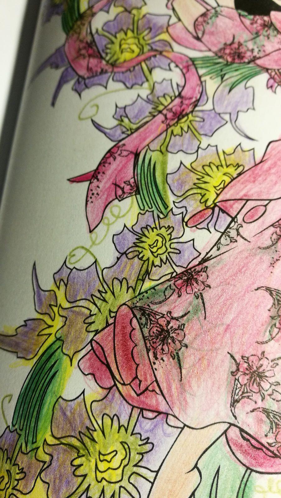 Coloriage- Esméralda. Juillet 2017