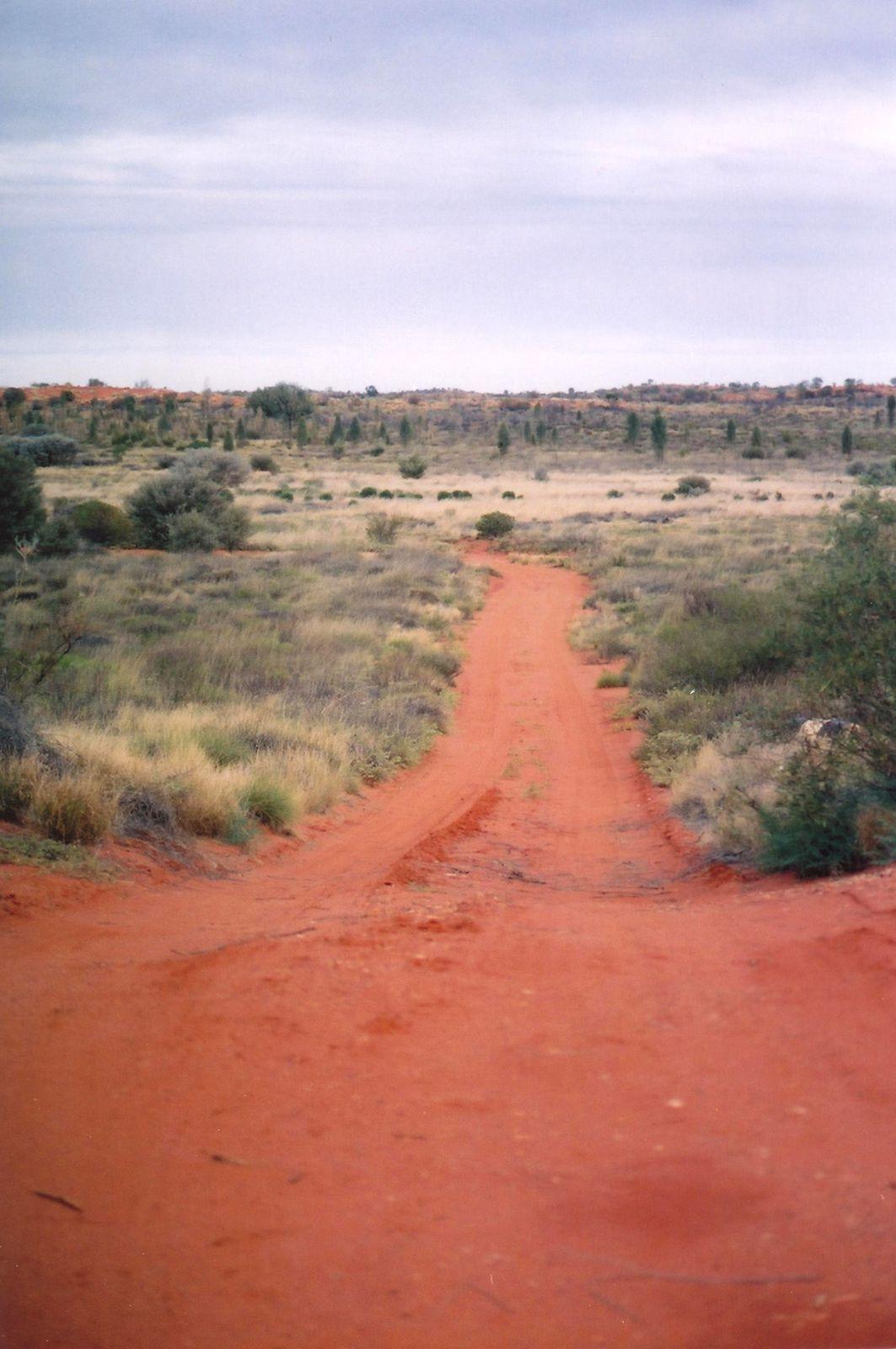 Pistes dans l'Outback australie par charlotte laforgue