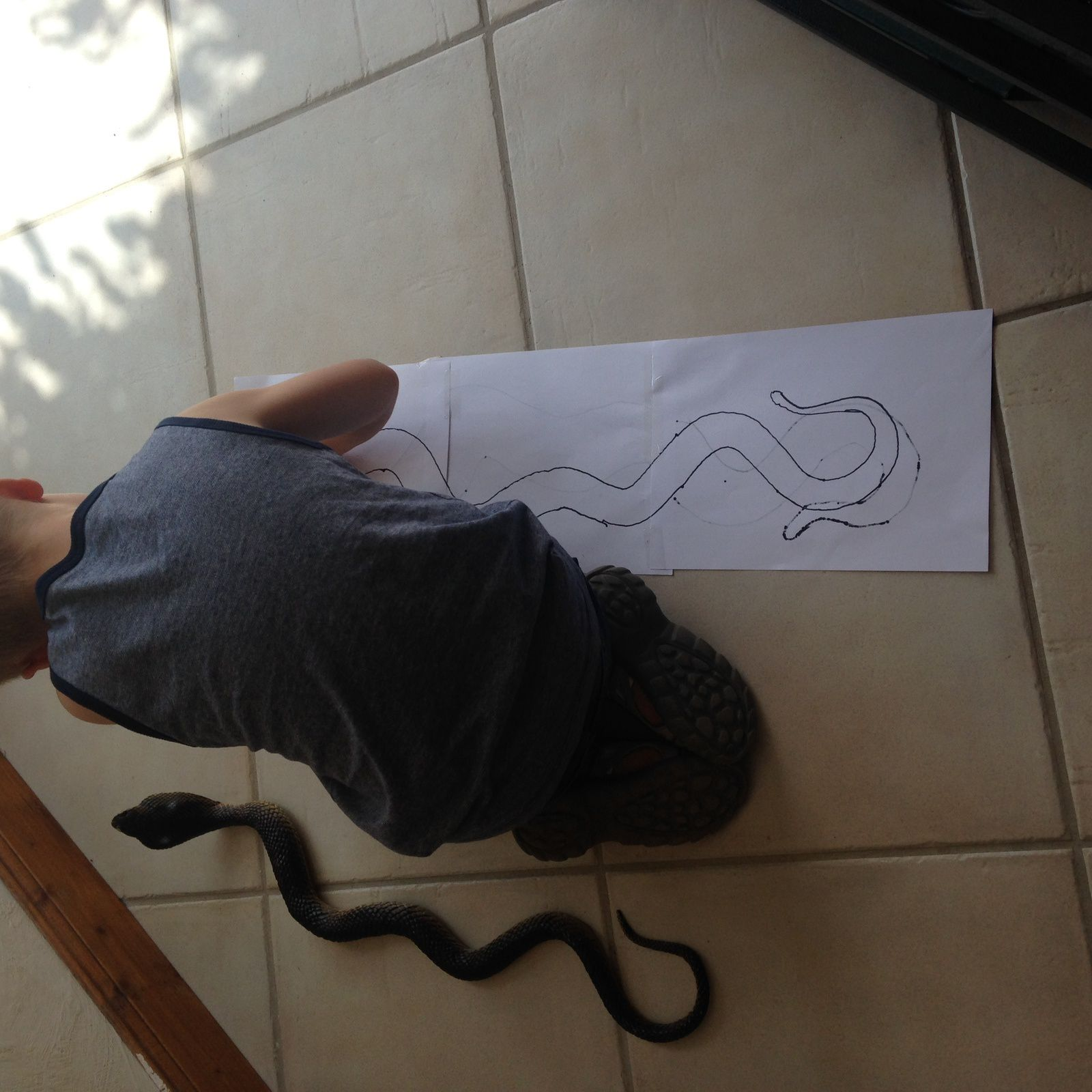 DESSINER UN SERPENT -