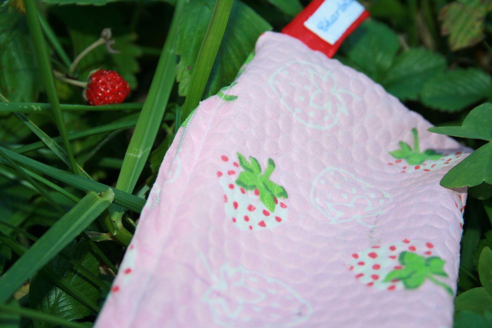 trousse aux fraises de charlotteblabla blog*