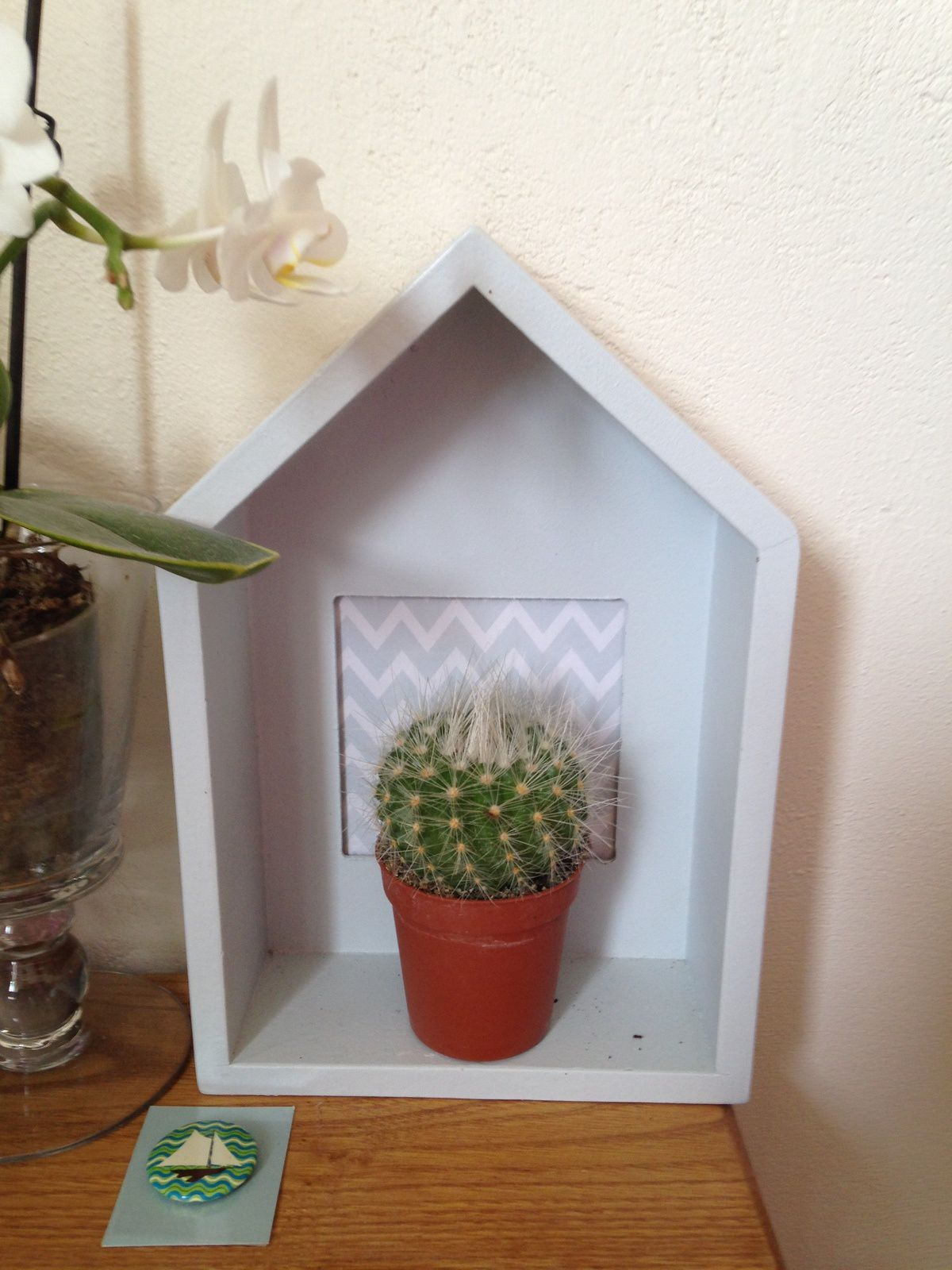 #decoration #cactus #maisonette #orchidee #charlotteblabla blog