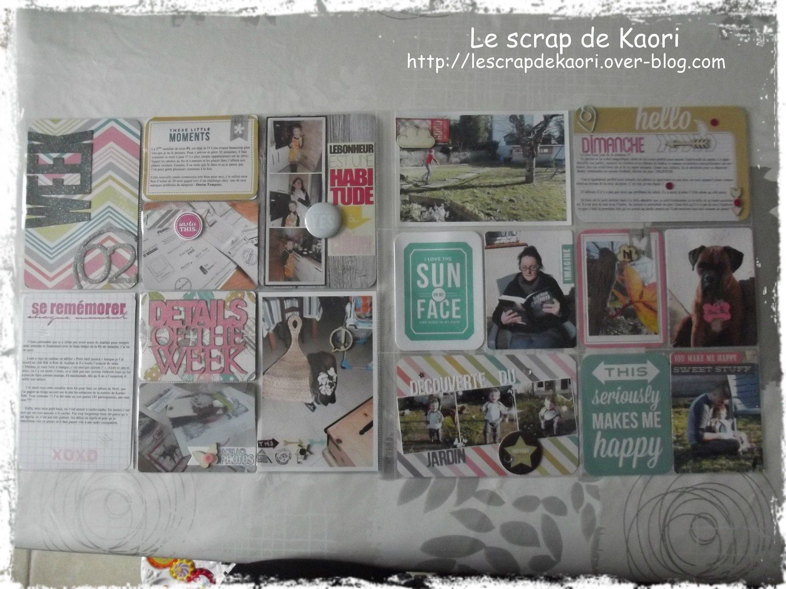 Project Life : semaine 2