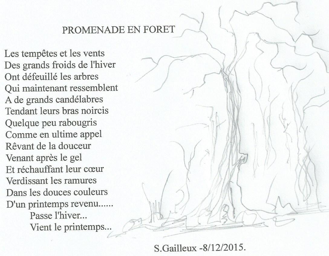 Promenade en forêt de Simone Gailleux