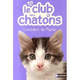 Le club des chatons : l'accident de Plume
