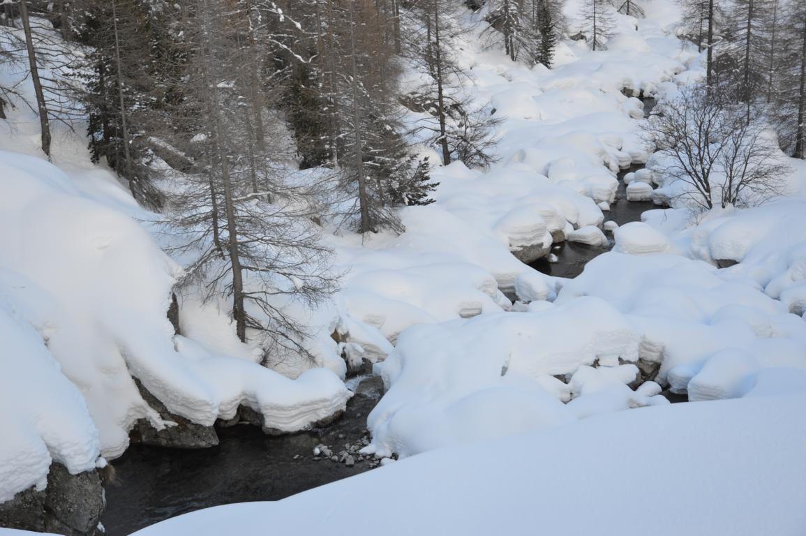 Rando raquette de la neige a gogo le 13 février 2014