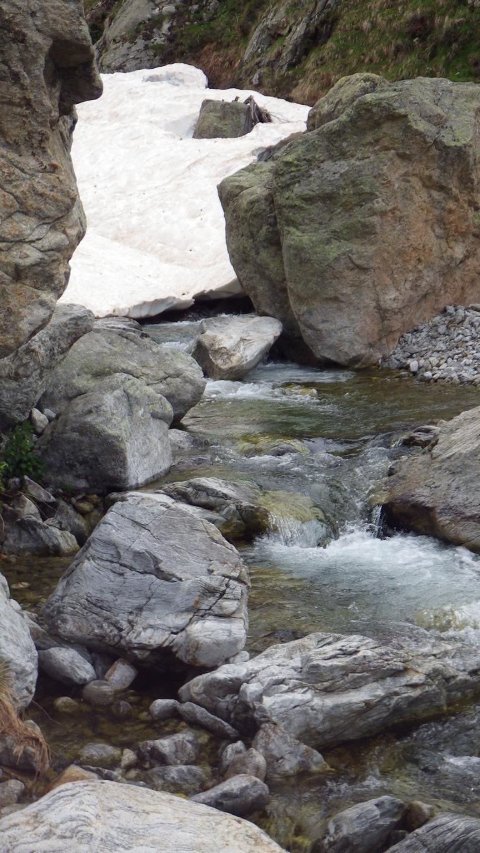 Retour sur un torrent de montagne le 4 juin 2014
