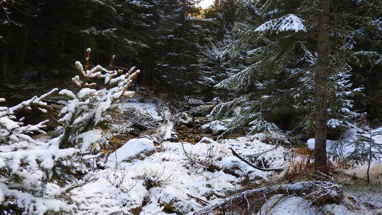 Première neige en 2016 en remontant un torrent