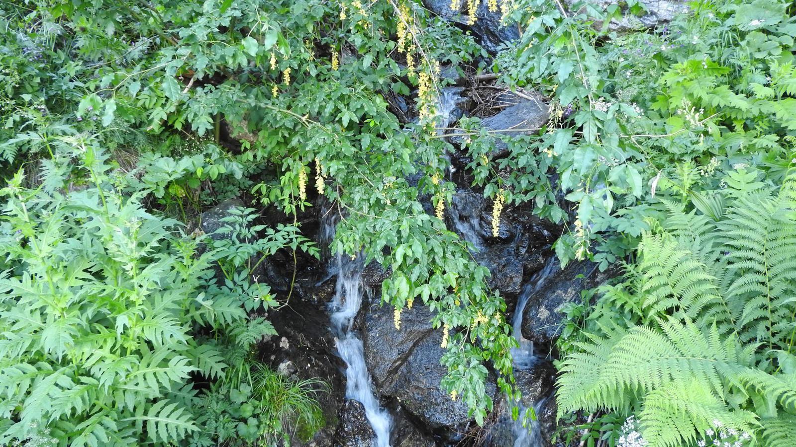 Le parcours des cascades et des chutes