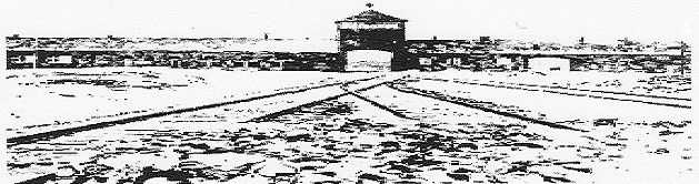 70ème ANNIVERSAIRE DE LA LIBÉRATION DES CAMPS NAZIS