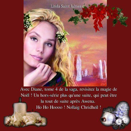 Un Noël pas comme les autres avec Diane de Linda Saint Jalmes