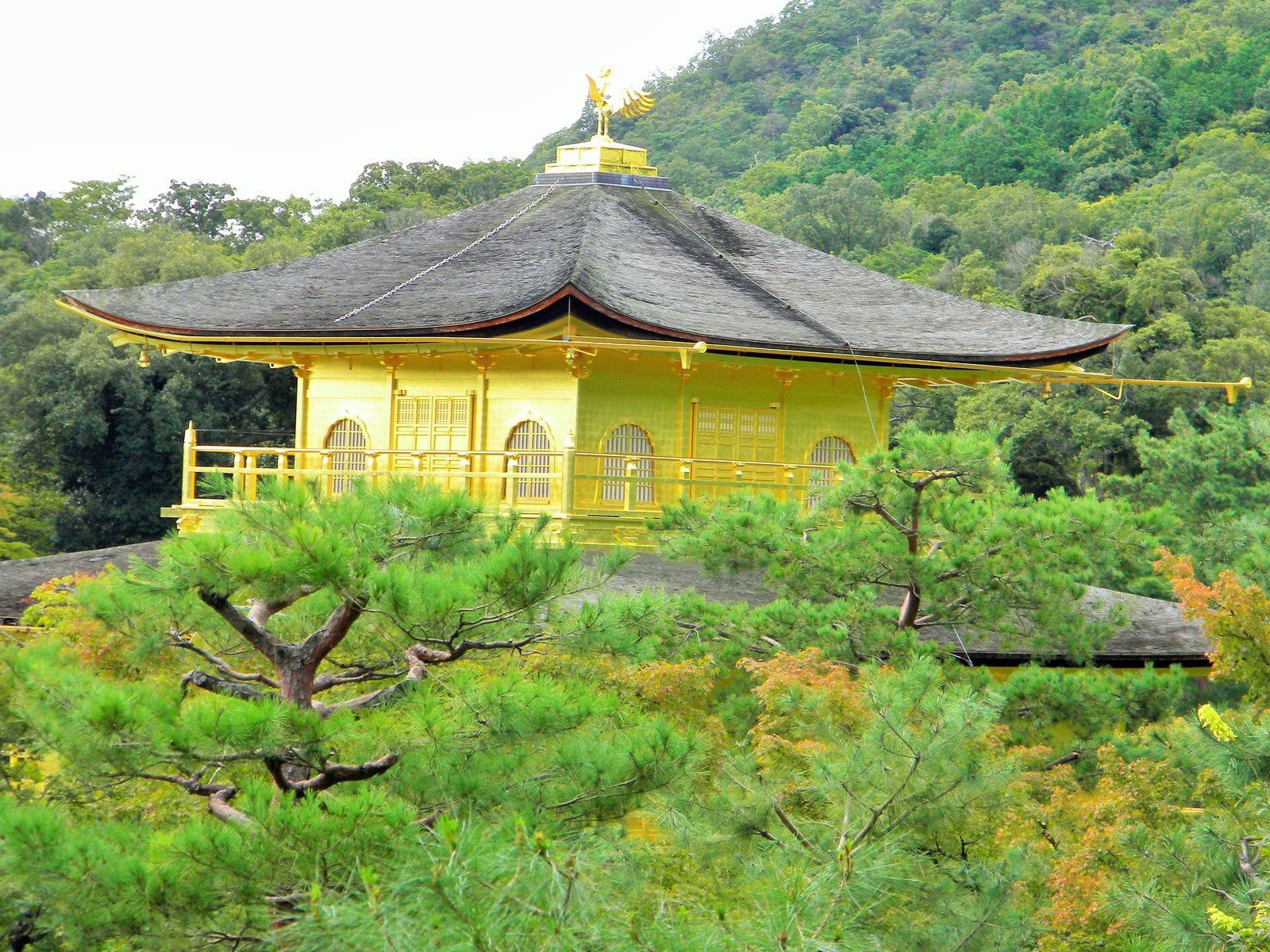 Le temple d'or (Kyoto)