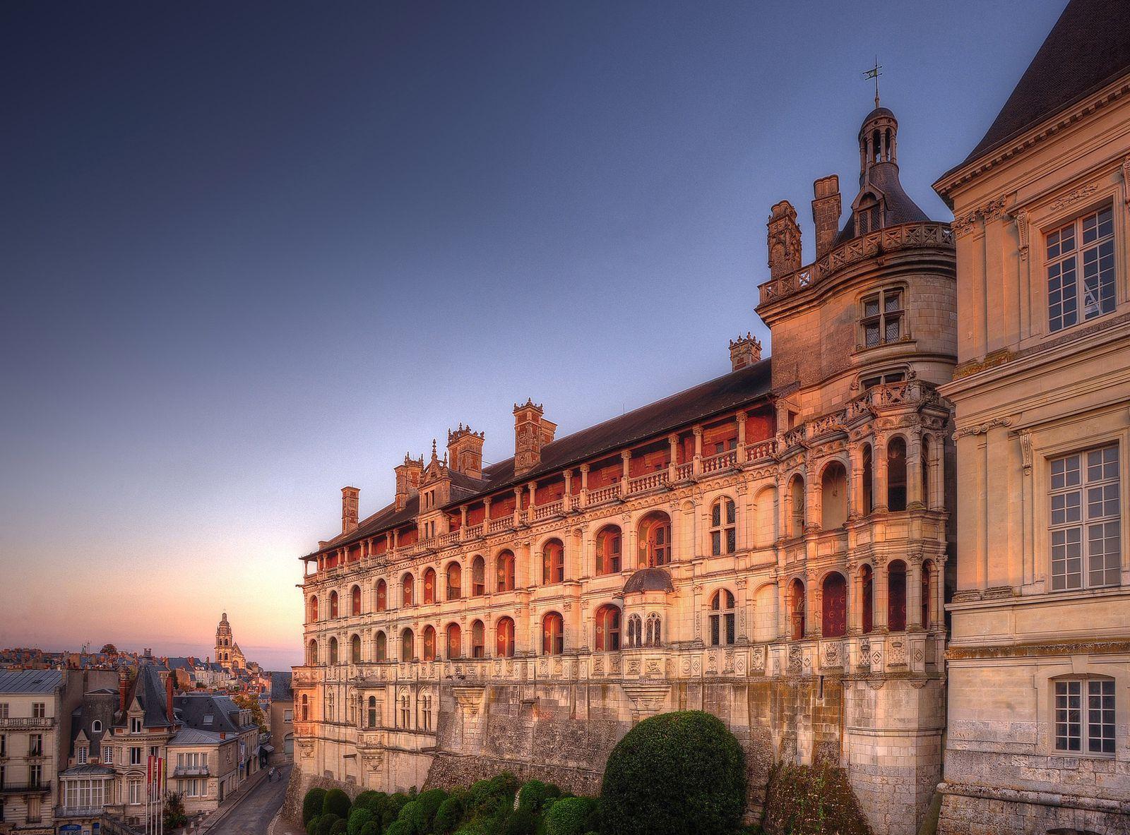 Château de Blois (41000 Blois, France)