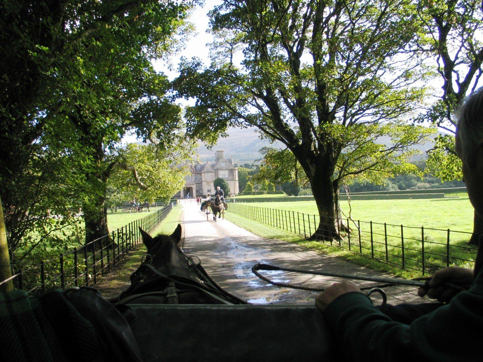 Coup de coeur : Muckross House (Irlande)