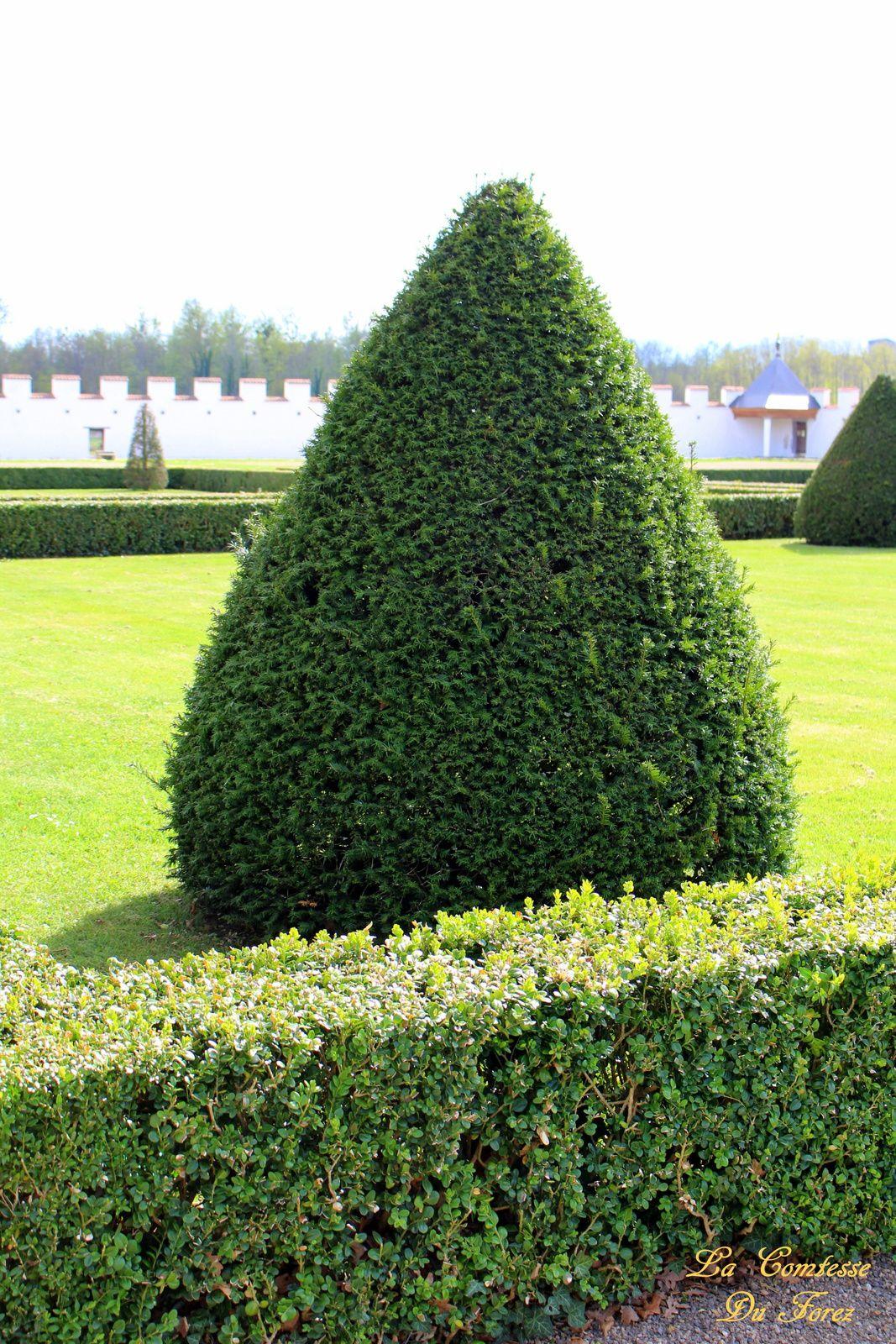 Château de la Bâtie d'Urfé (Saint-Etienne le Molard 42130) Partie 4 : le jardin