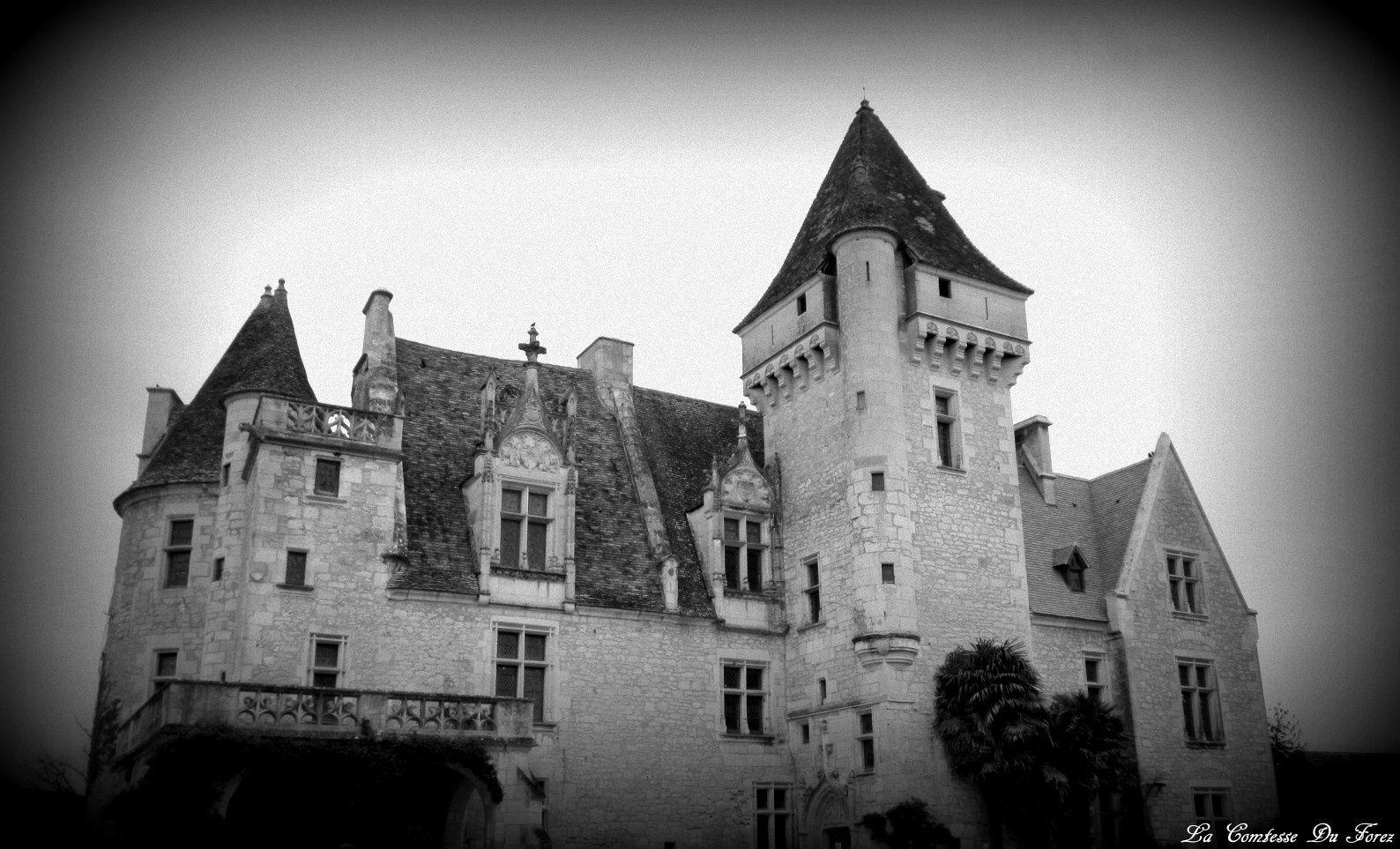 Château des Milandes (24250 Castelnaud-la-Chapelle)