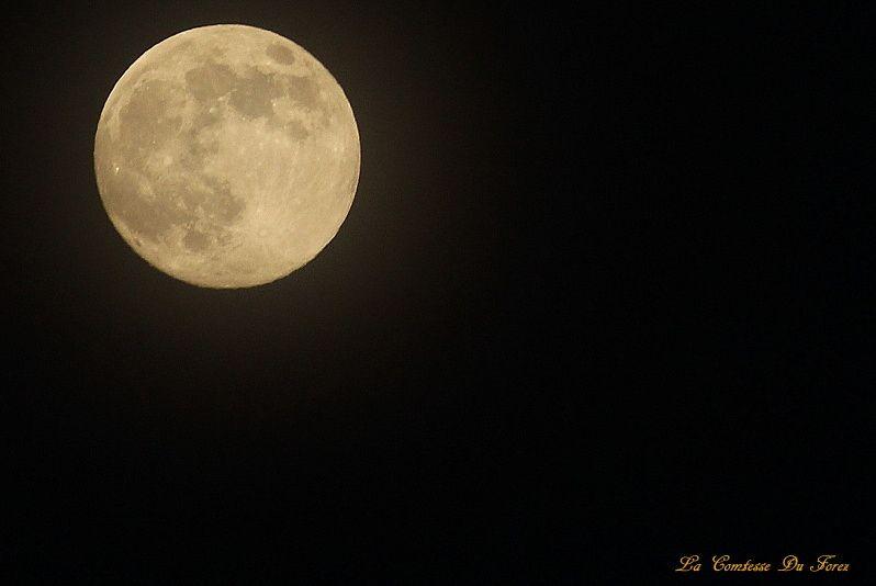 Au jardin :  La Lune de ce soir