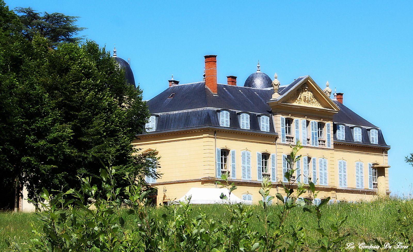 Château d'Ailly (42120 Parigny, Loire France)