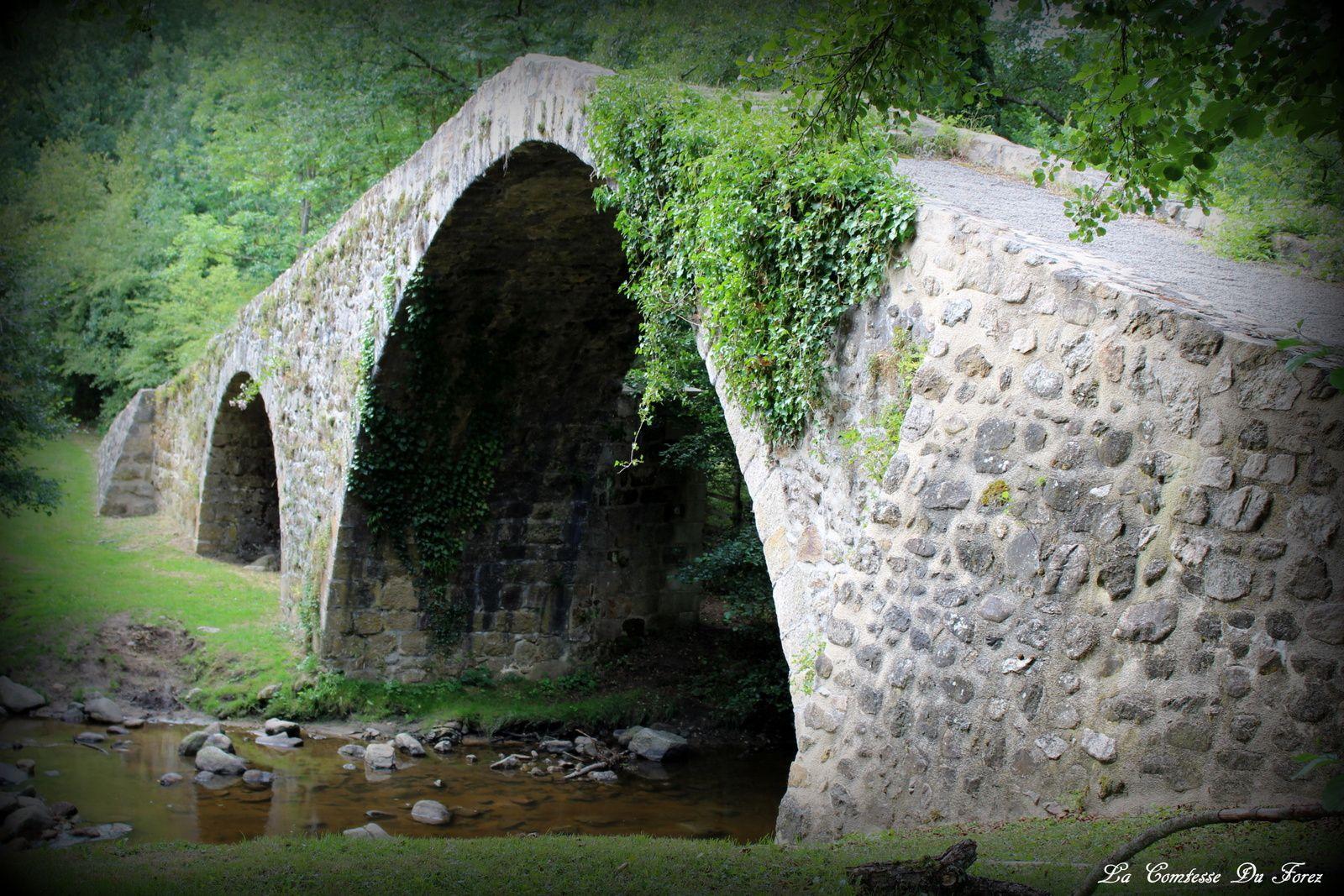 Le Pont Du Diable (42680 St-Marcellin-en-Forez)