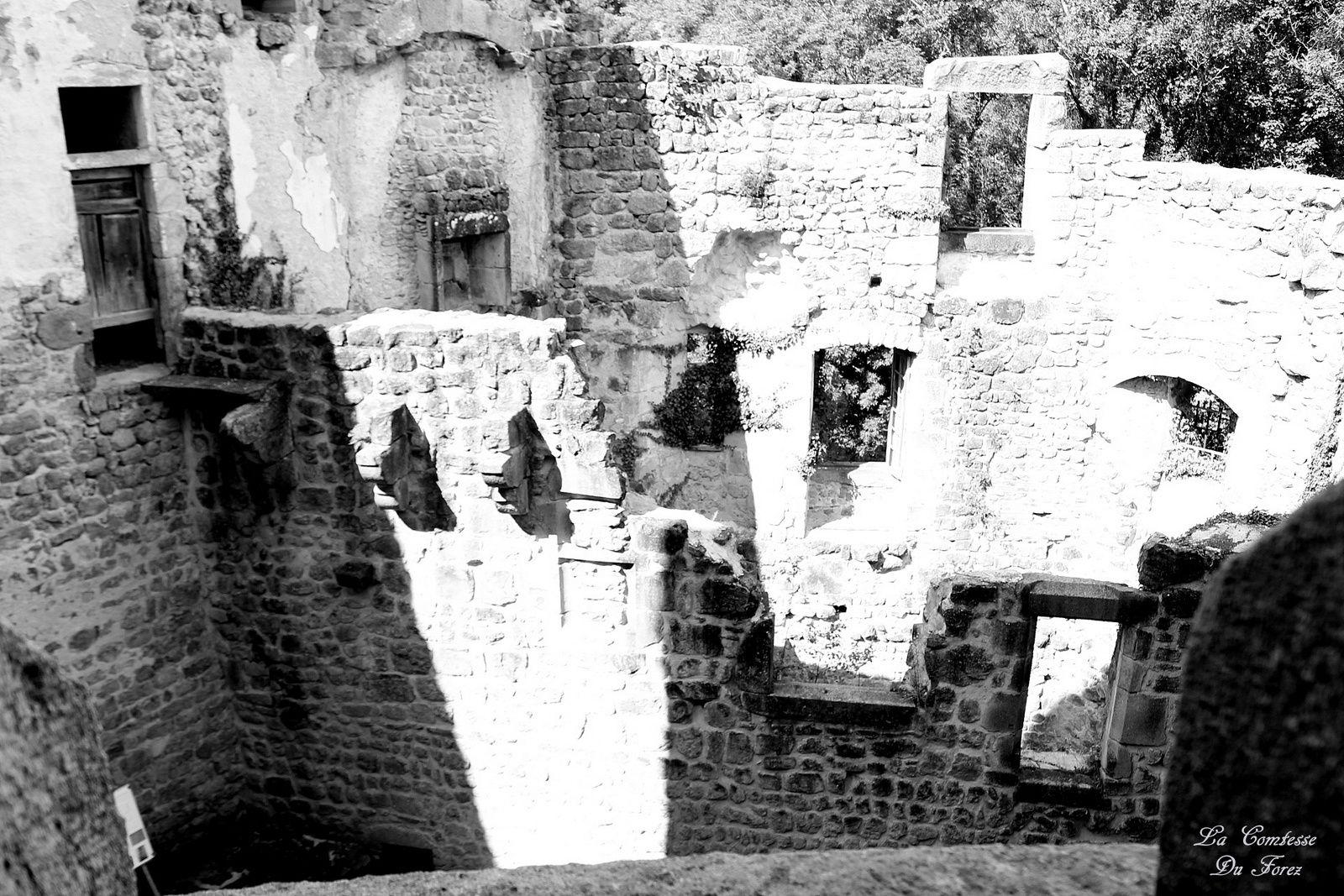 les ruines vue d'en haut