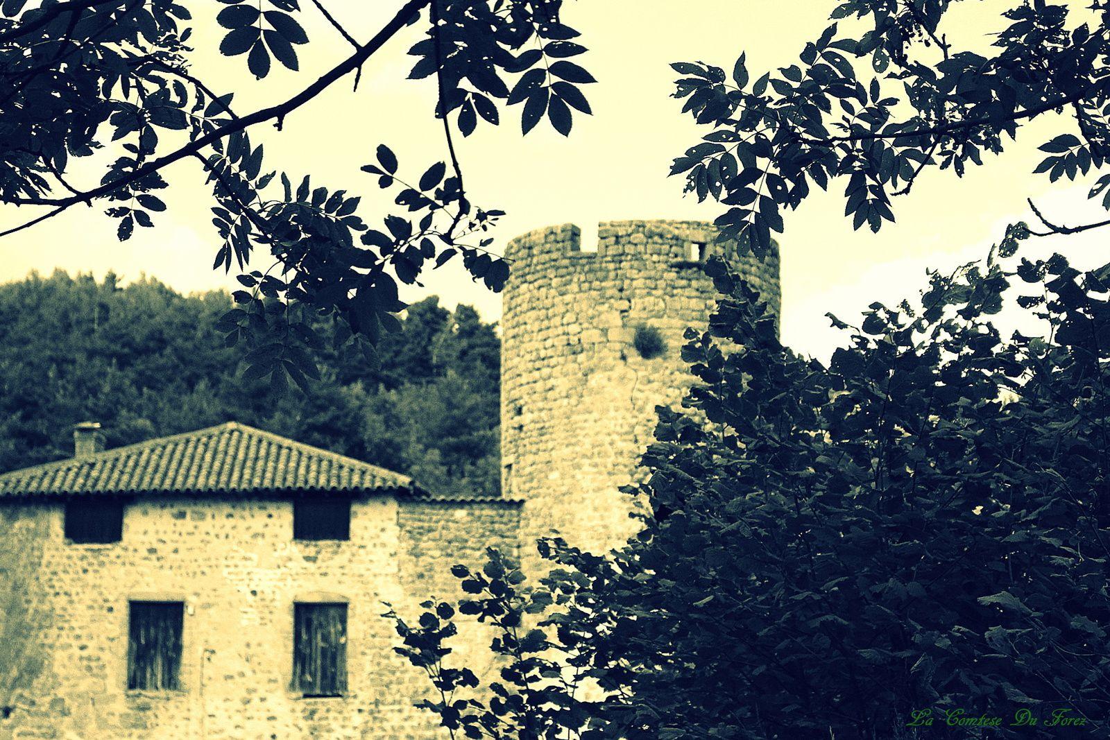 le château se dévoile