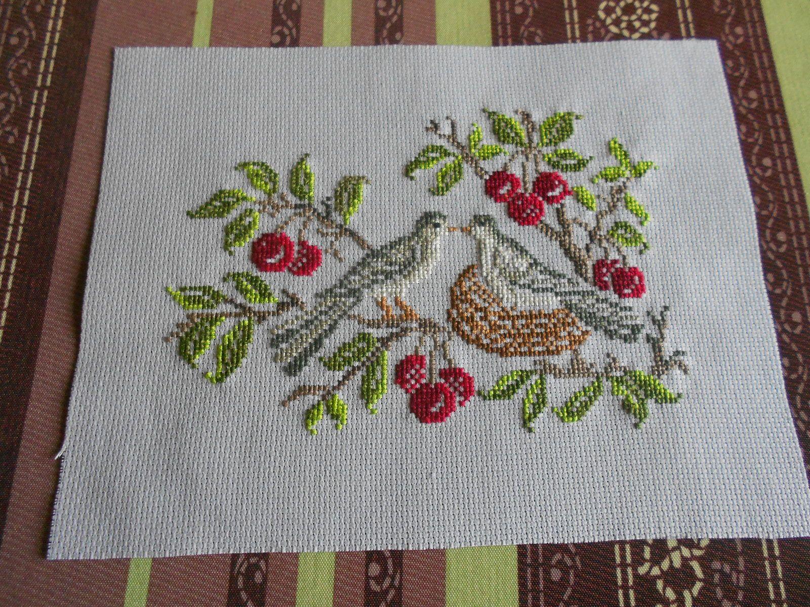 oiseaux et cerises