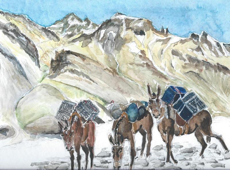 Un hommage aux mules de la vallée des Horcones