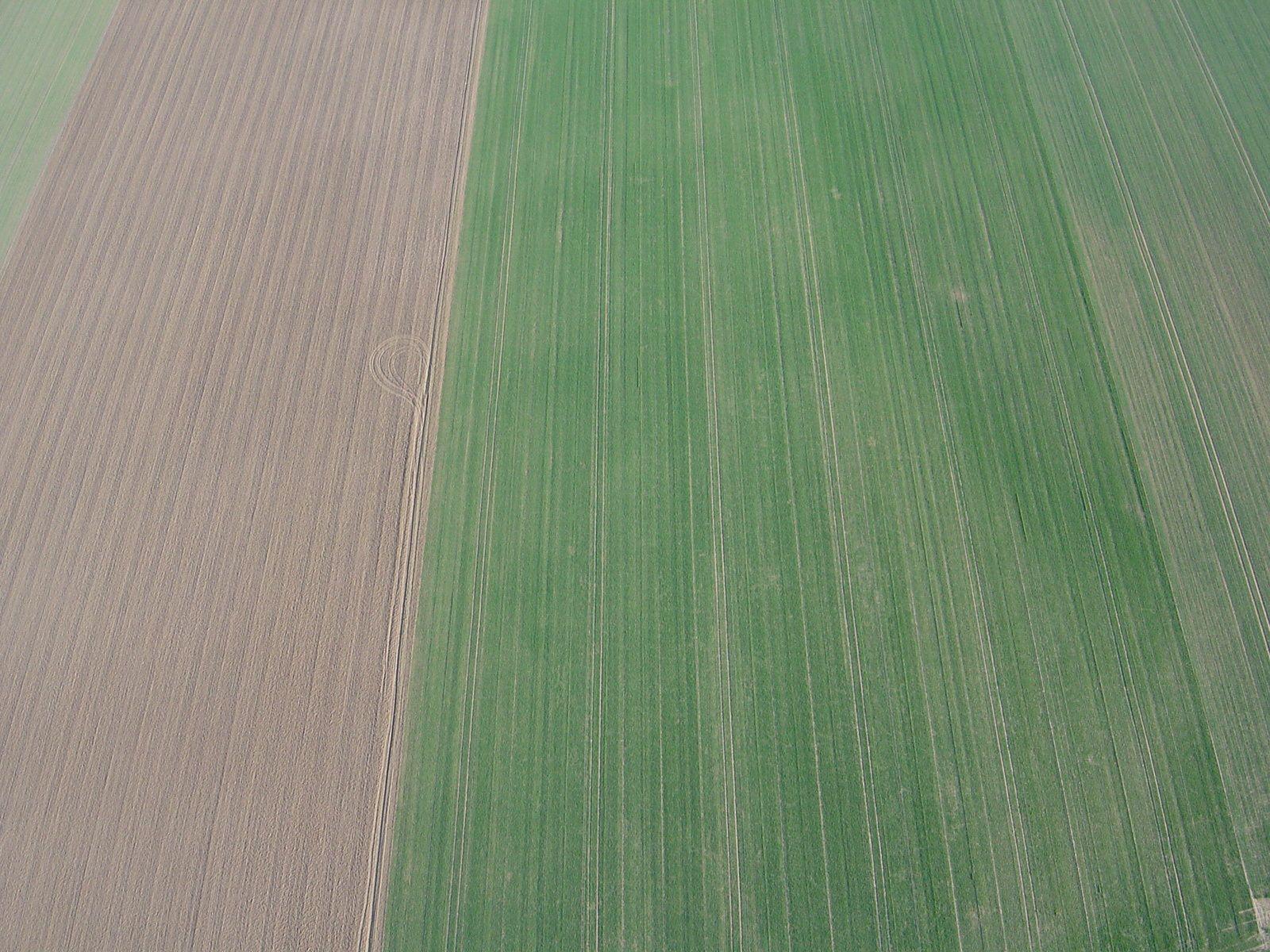 Rien à voir de particulier, mais j'aime bien la symétrie des champs ! :-)