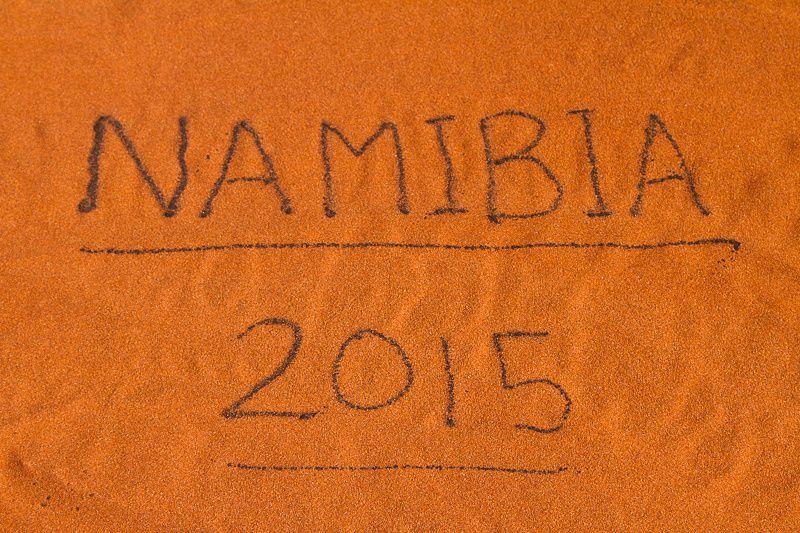 Les chats noirs en Namibie : le retour