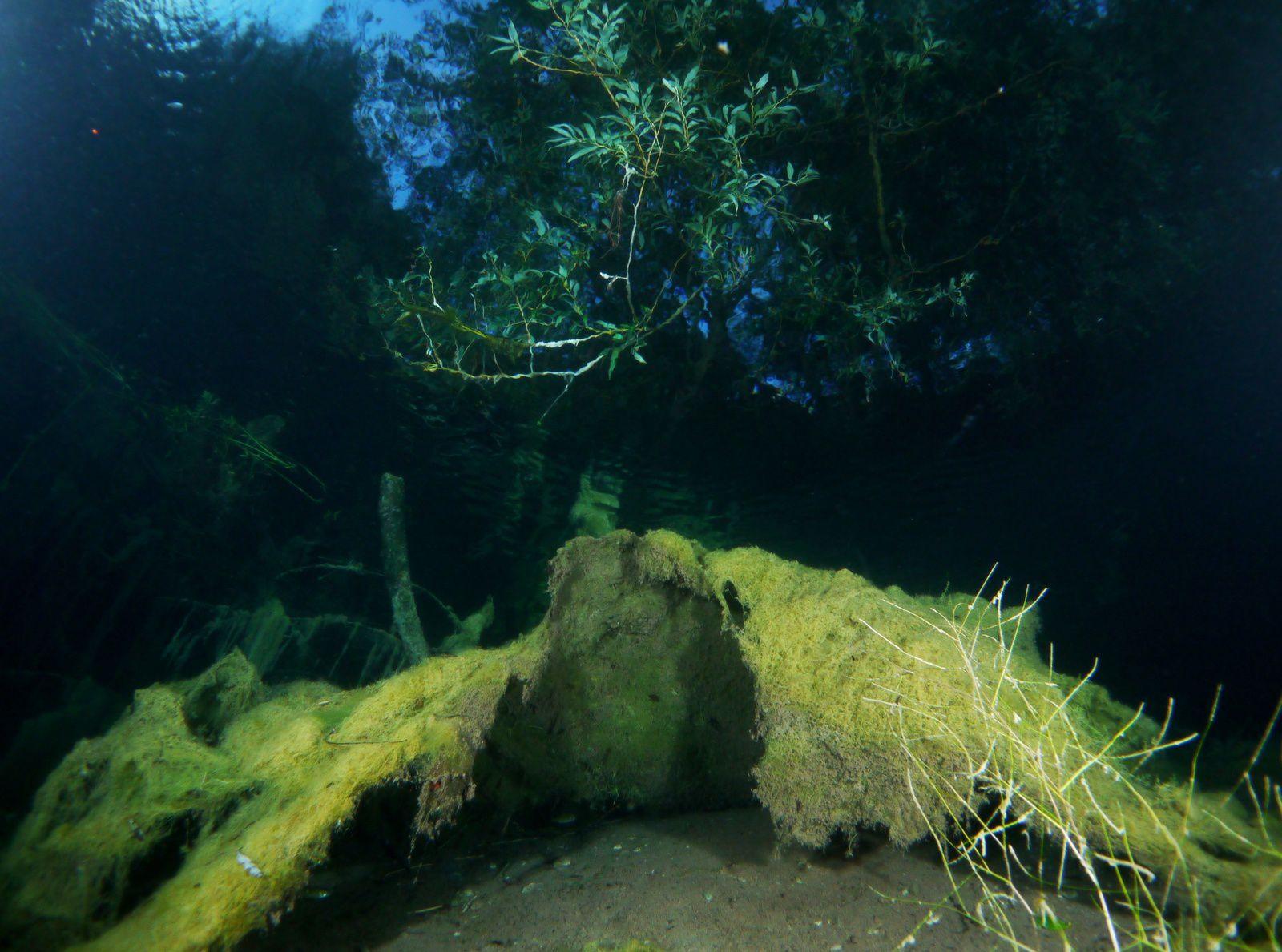 Sundeck dive à la gravière du Fort