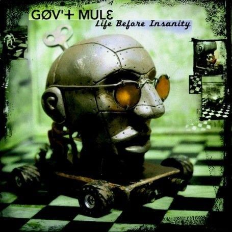 GOV'T MULE -Life Before Insanity