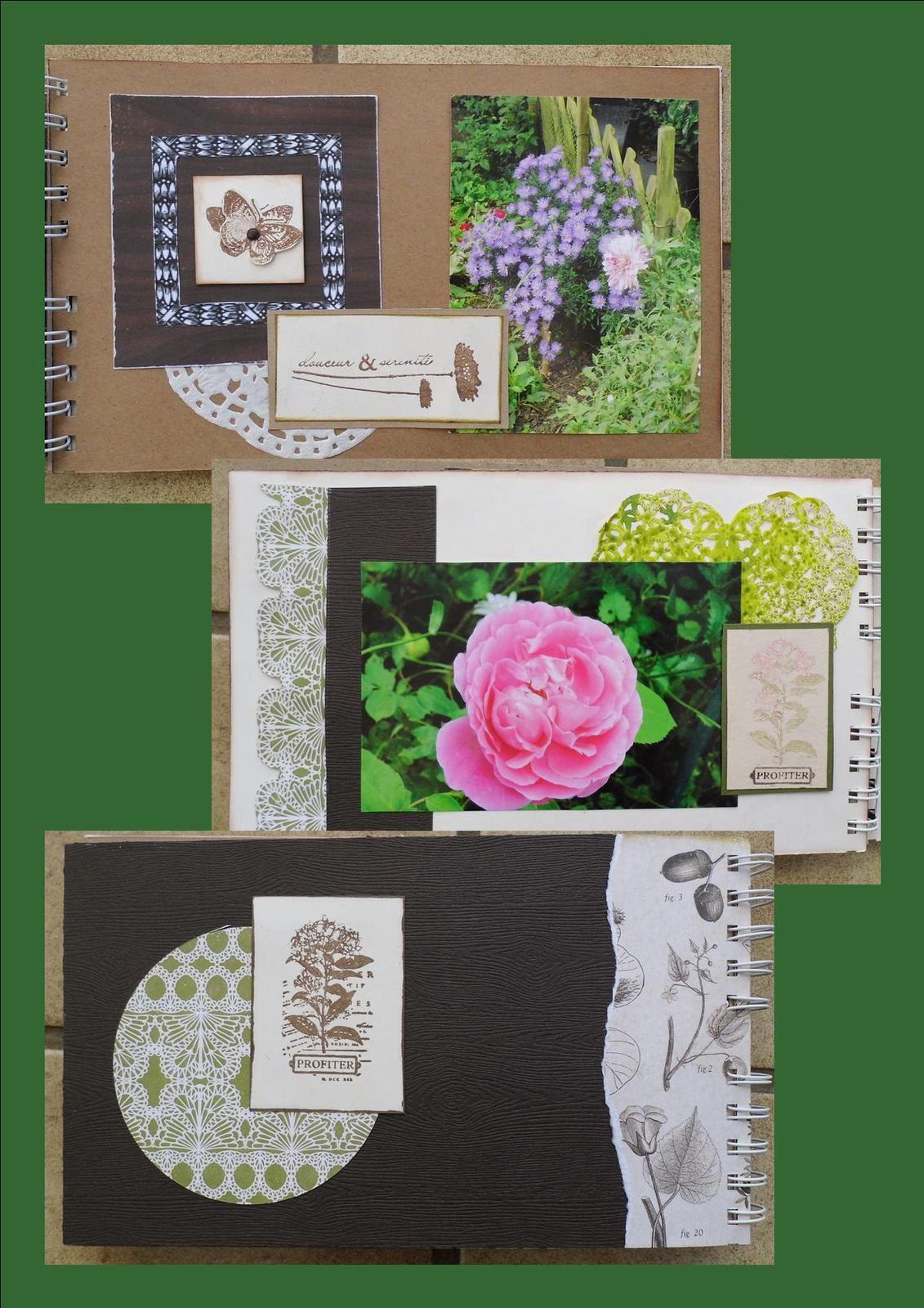 Album Botanique