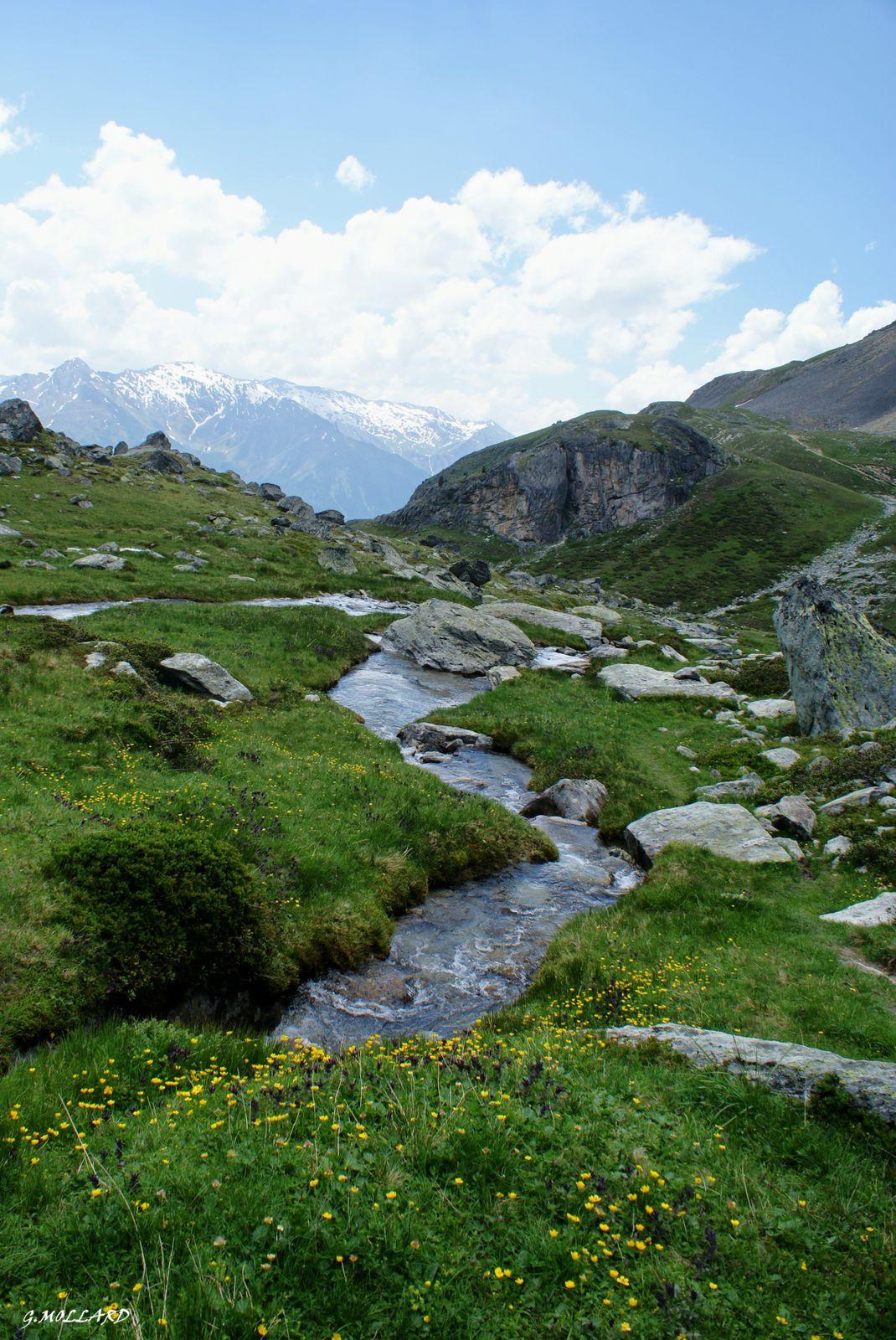 le ruisseau semble fendre l'herbe et les roches.