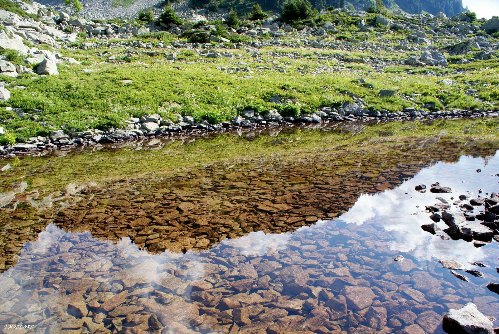 lac de la Freche.