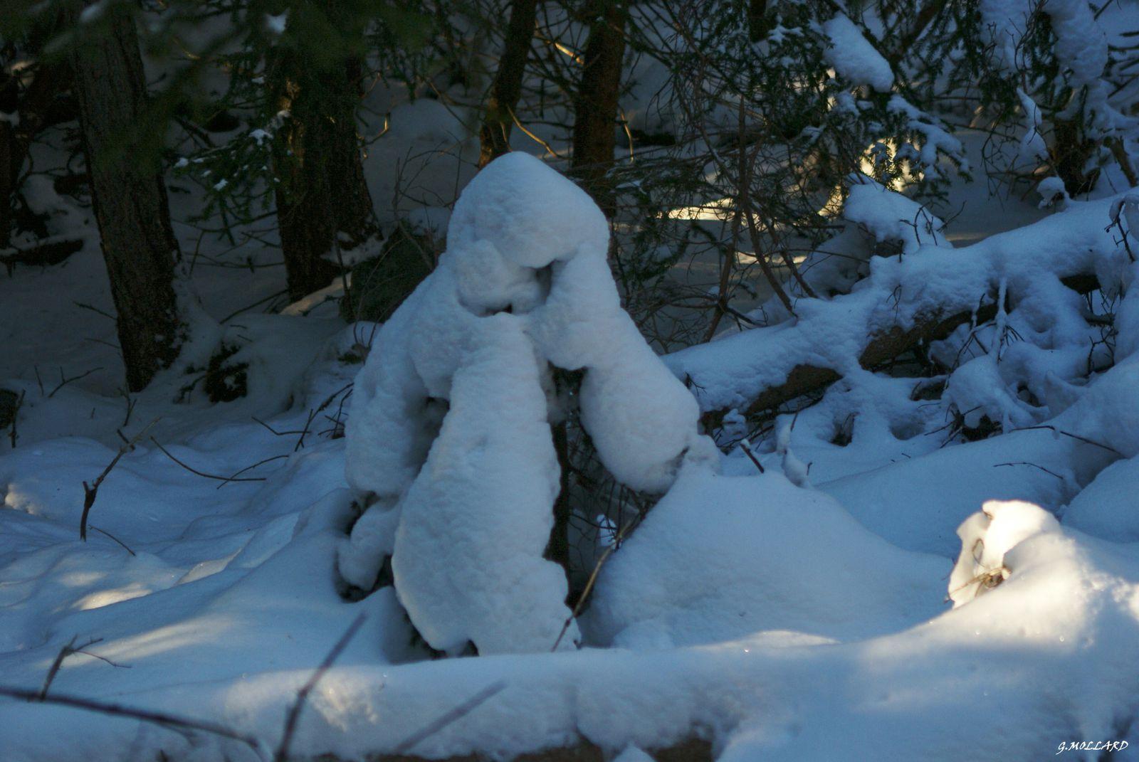 Rando,neige,glace,photos d'hiver.