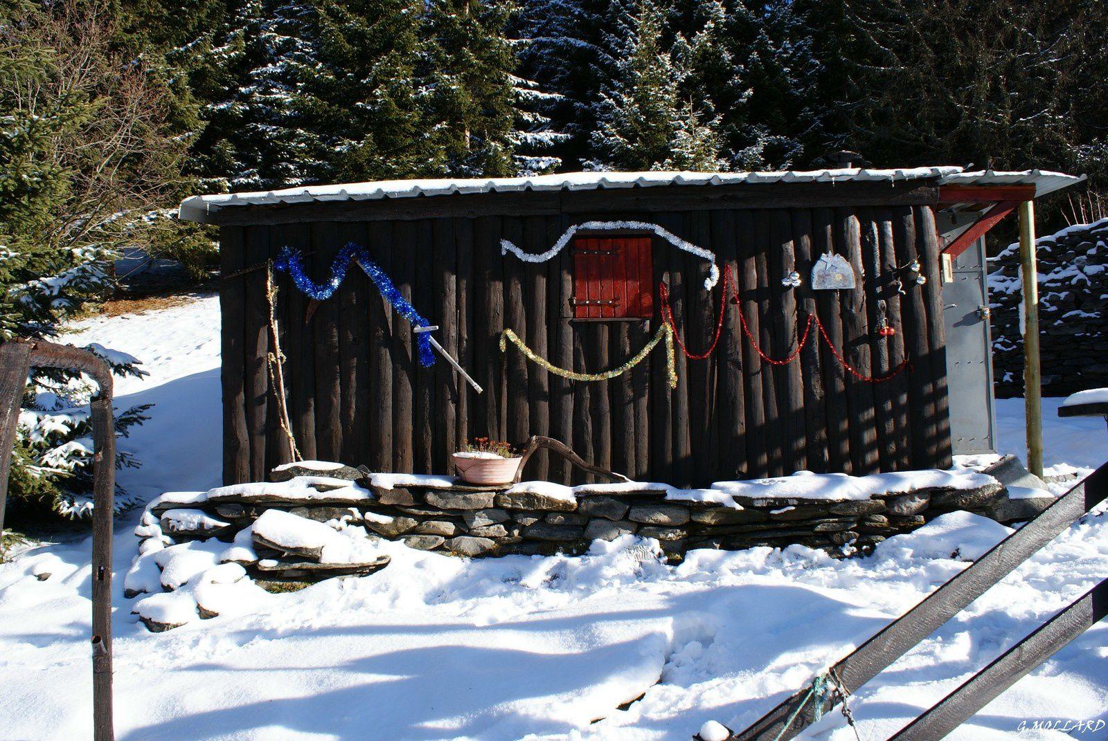 ma cabane dans la foret à 1825 m d'altitude.