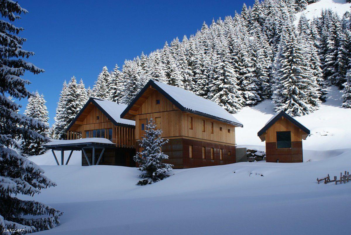 photo de cet hiver.