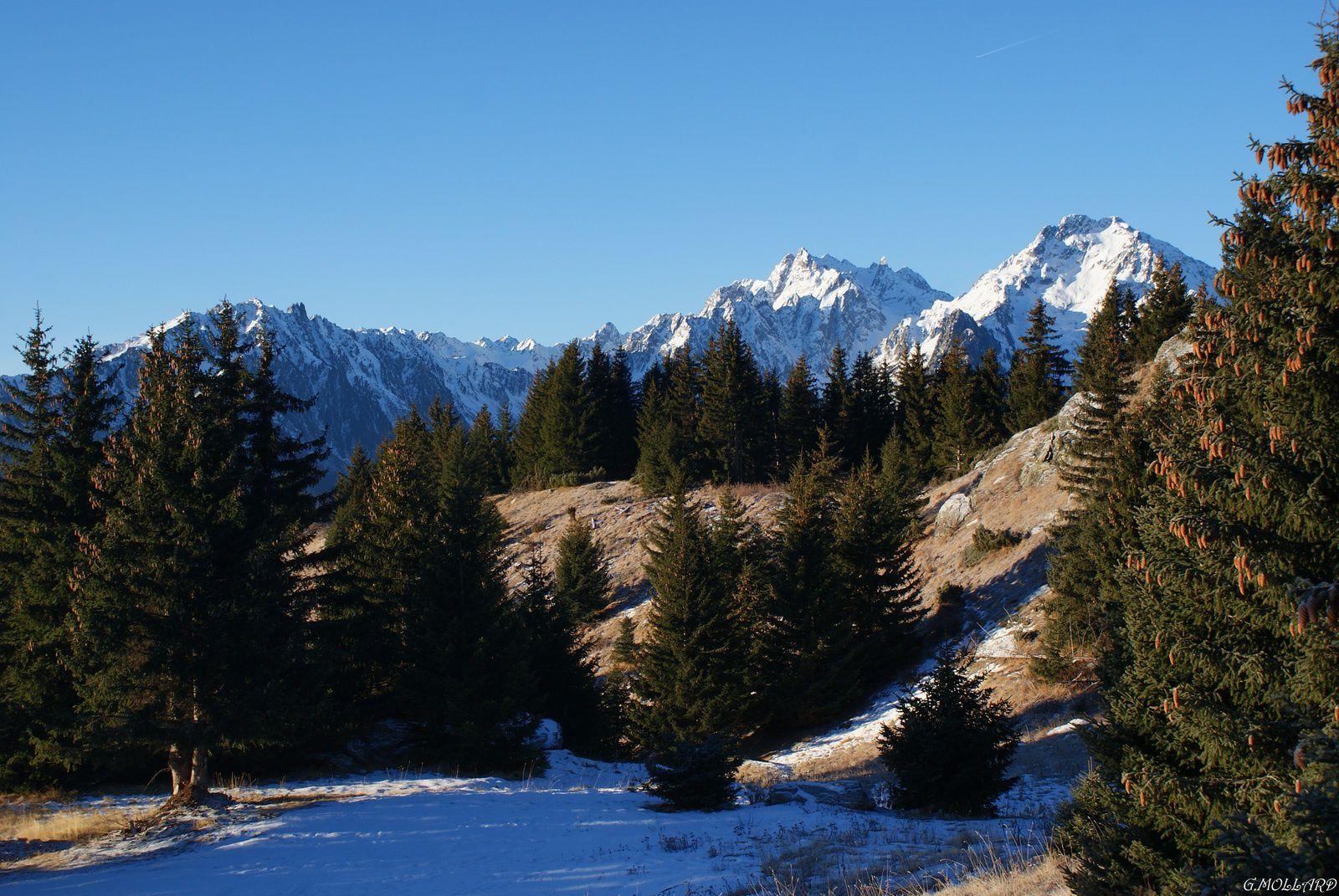 Petite rando matinale du coté du refuge et lac de la grande Léchère.
