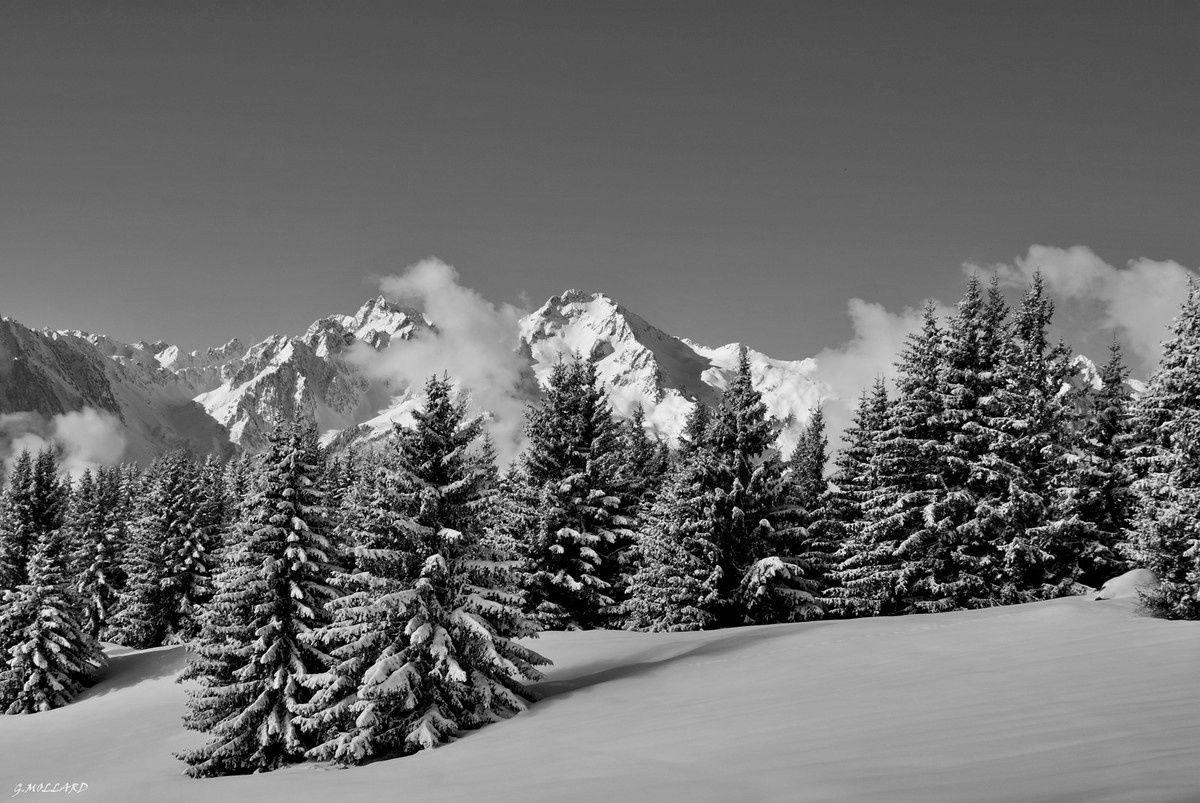 4) Paysage d'hiver