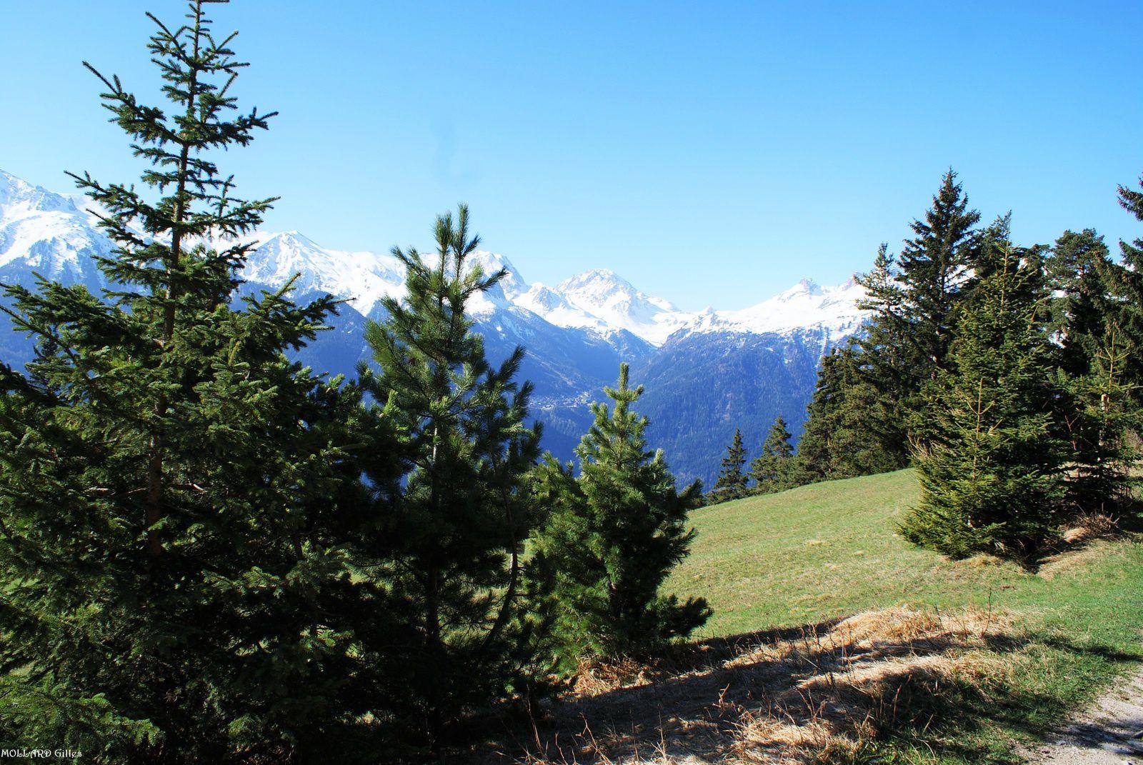 Les 4 chemins, d'Amodon à l'Orgère.